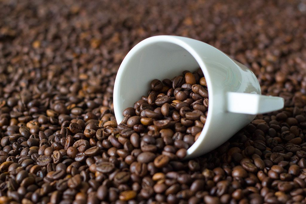 Close Up Photo of White Coffee Cup within many roasted Coffee Beans