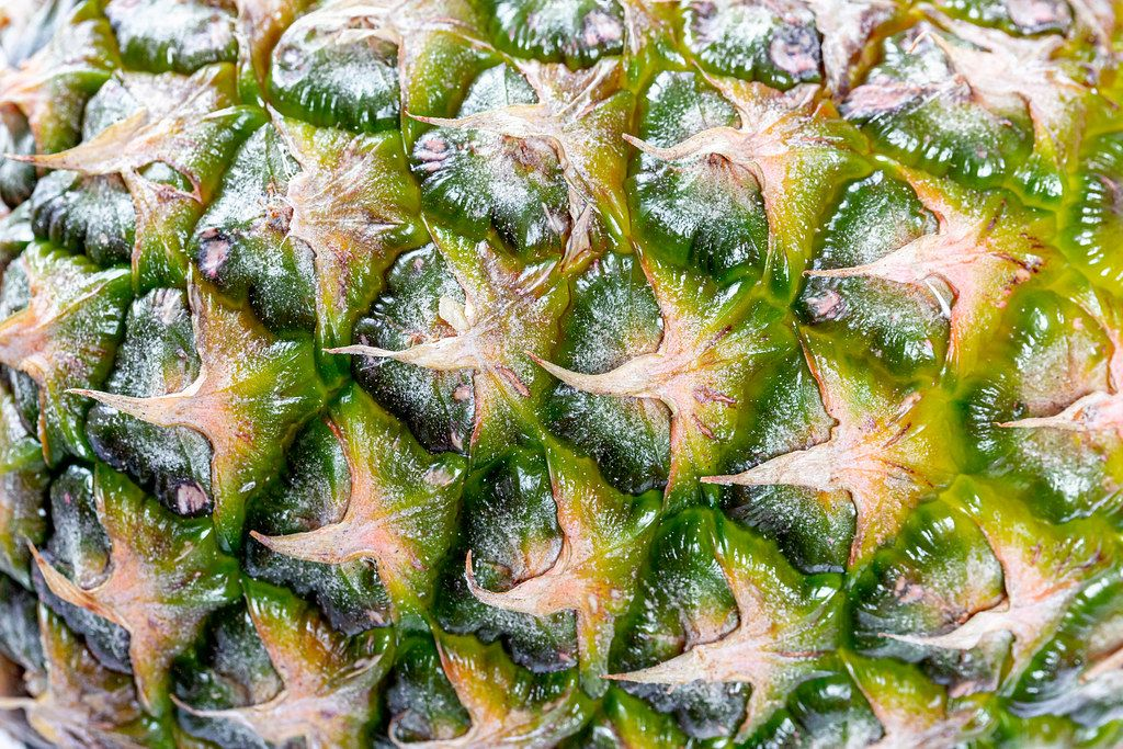 Close-up texture of pineapple peel