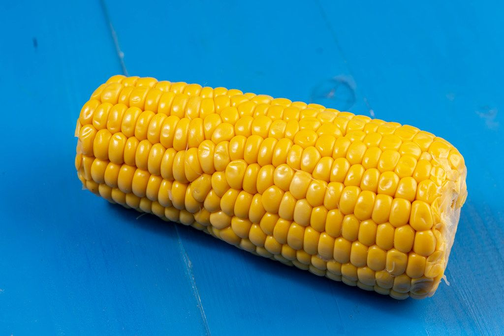 Cooked Young Corn on the blue boards
