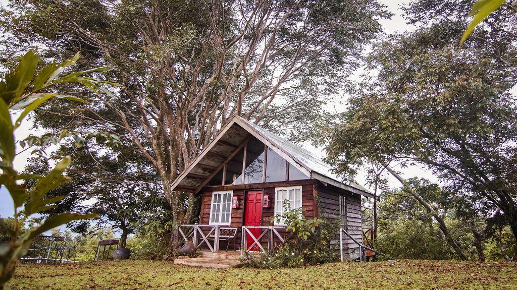 Cozy Cabin located in the woods of Salvador Benedicto
