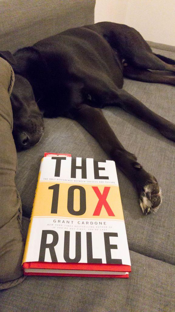 Das Buch The 10X Rule von Grant Cardone
