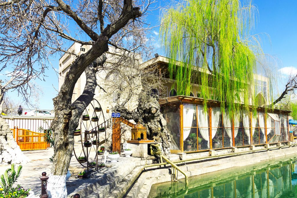 Das Restaurant des Lyabi-House Hotels mit Pool und Weidenbaum in Buchara, Usbekistan