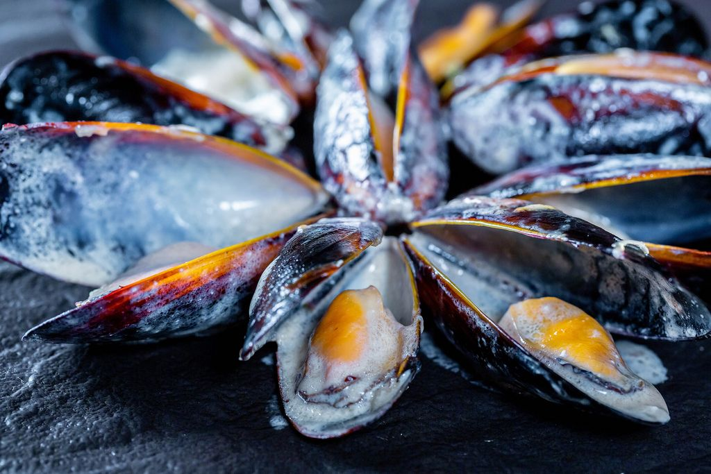 Delicious mussels on black background