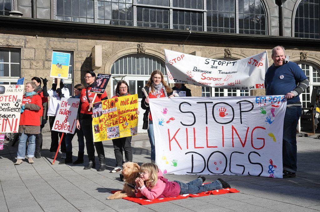 Demo gegen Hundequälerei in Hamburg