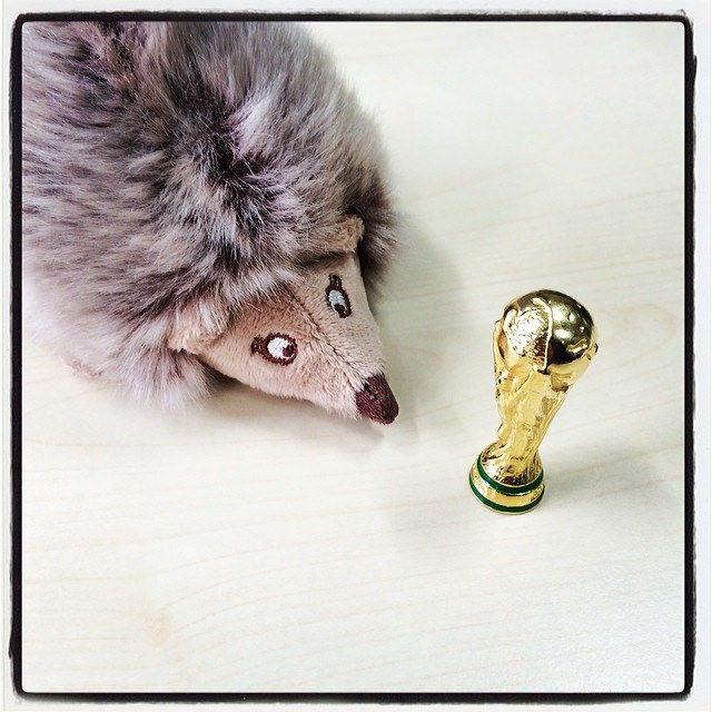 Den WM-Pokal fest im Blick. Noch 111 Tage bis zum WM-Start. #fifa #wm #brazil #brasilien #deutschland #pokal #wm2014
