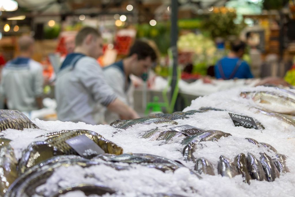 Different kinds of fish on ice at Danilovsky Market in Moscow