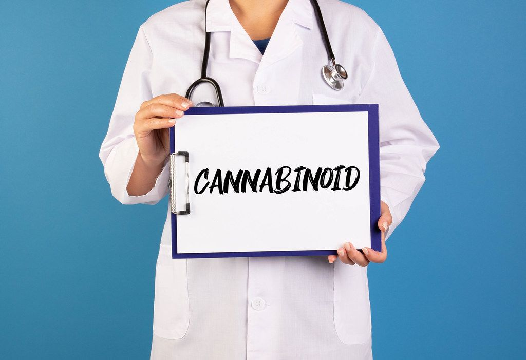 Doctor holding clipboard with Cannabinoid text