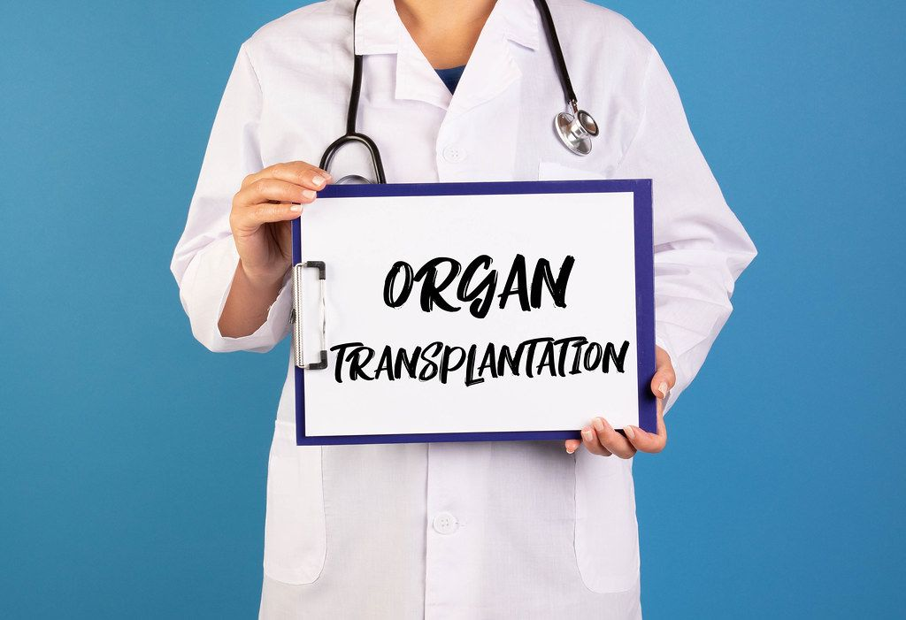 Doctor holding clipboard with Organ transplantation text