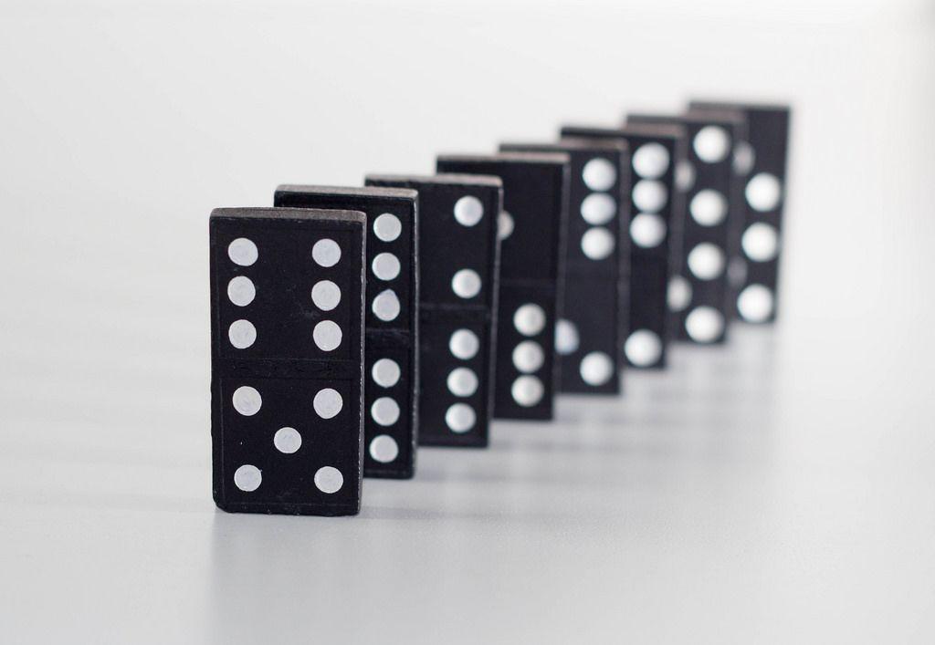 Dominoschlange