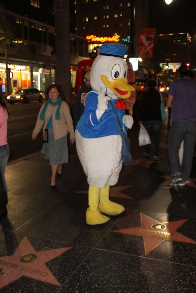 Donald Duck at Hollywood Walk Of Fame