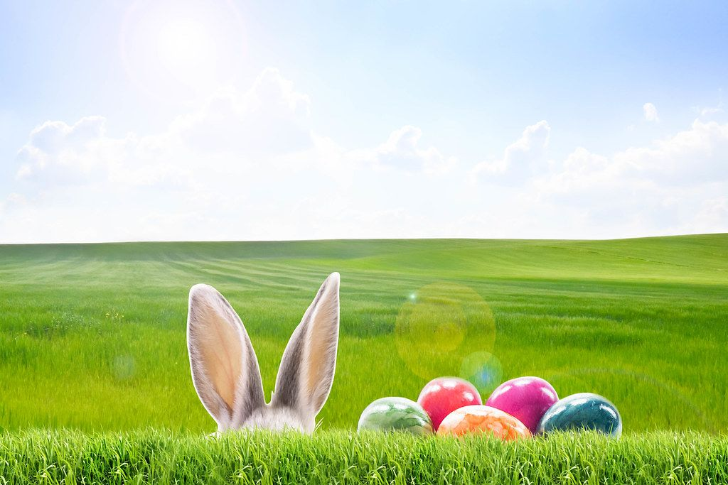 Easter time - rabbit ears and Easter eggs in front of a green field and blue sky
