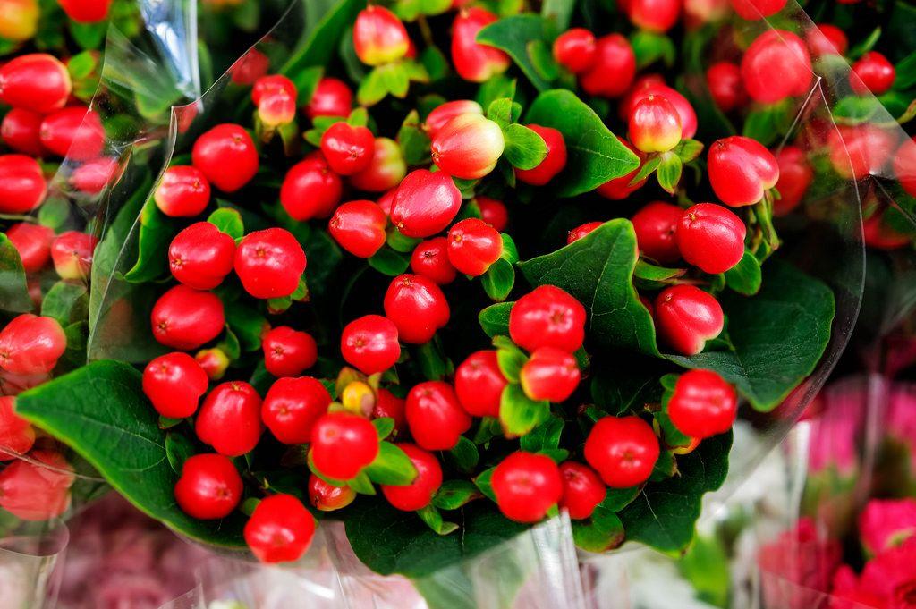 Ein Blumenstrauß mit roten Beeren in der Nahaufnahme