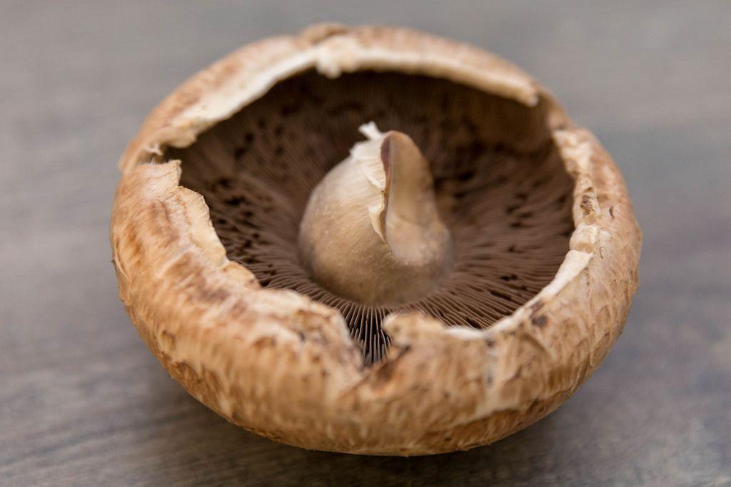 Ein brauner Champignon-Pilz mit der Unterseite nach oben liegen auf einem Holztisch