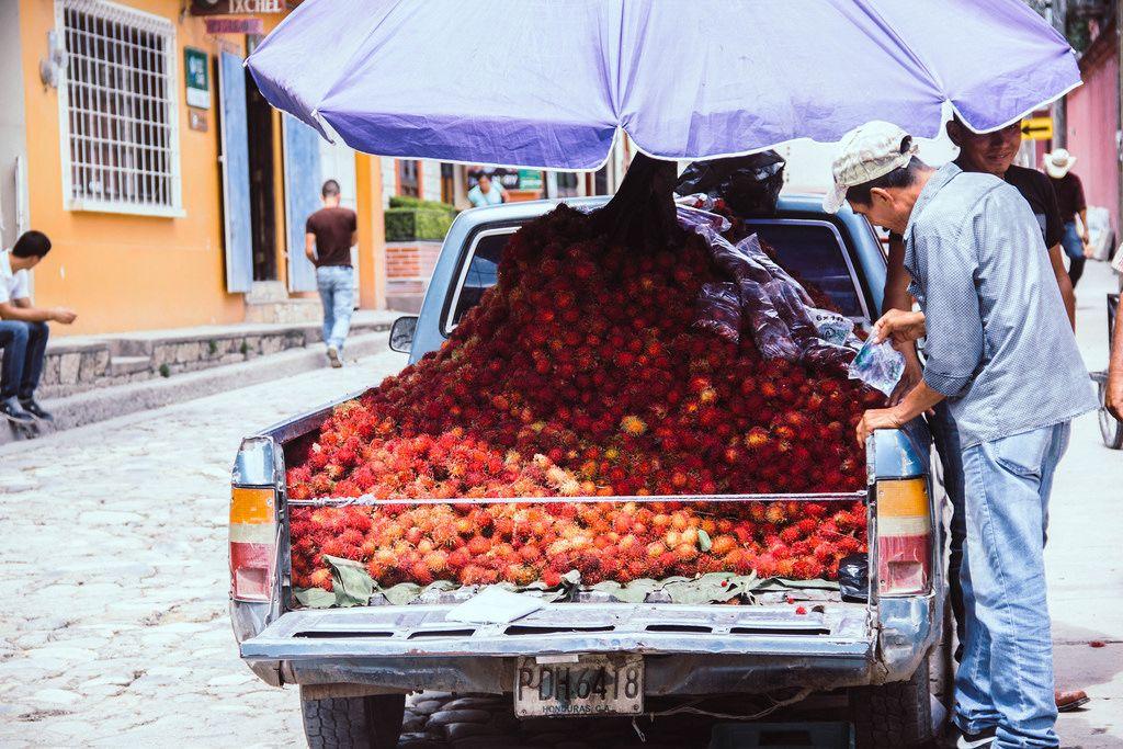 Ein Mann verkauft Rambutans von der Ladefläche seines Pick-Ups in Honduras