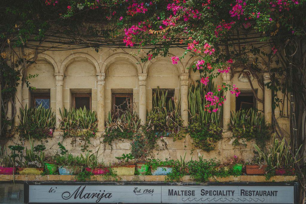Ein mit Pflanzen geschmückter Balkon eines Restaurants in Malta