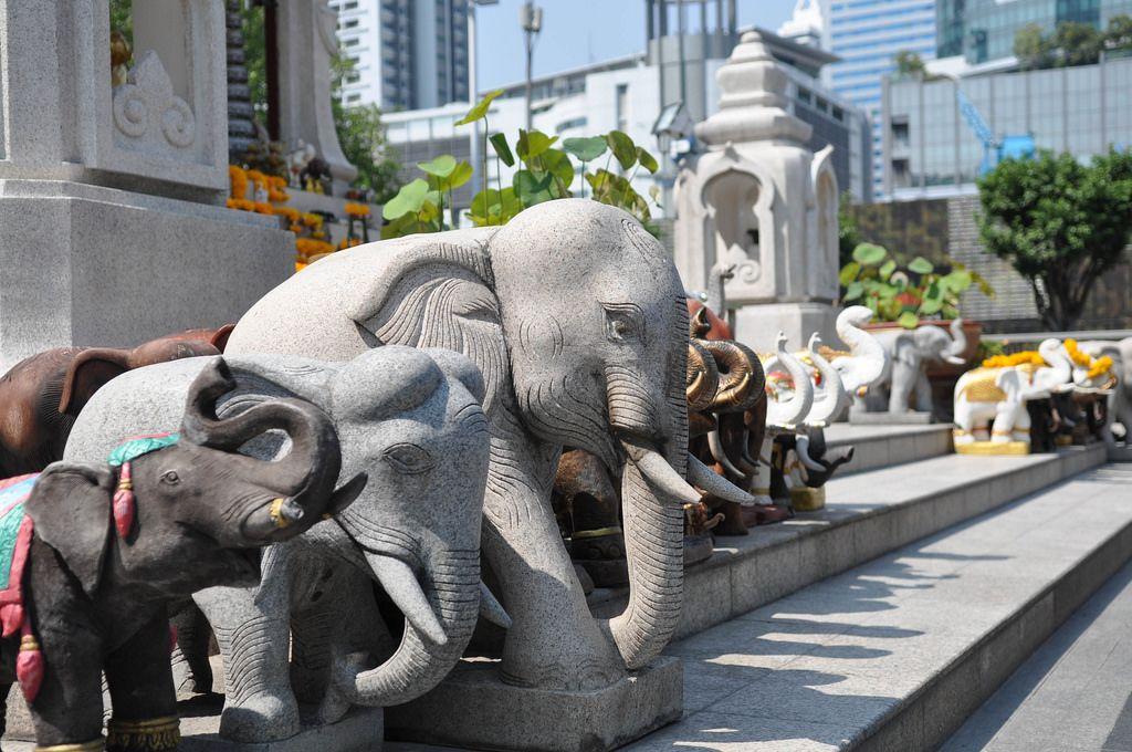 Elefantenstatuen verschiedener Formen und Größen vor einem Tempel - Thailand