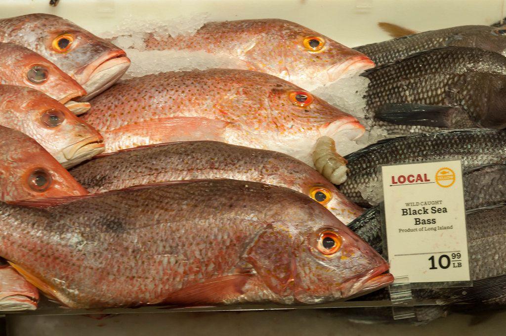 Fisch in der Vitrine in New York City, USA