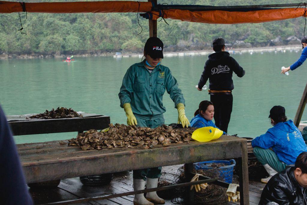 Fischerin reinigt die Schalen der gefischten Austern auf einem Steg