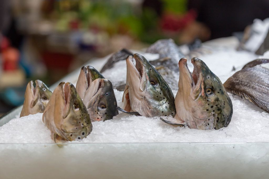Fish heads in a fish shop at Danilovsky Market in Moscow