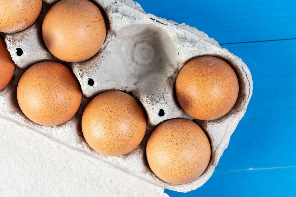 Flat lay above Chicken Eggs (Flip 2019)