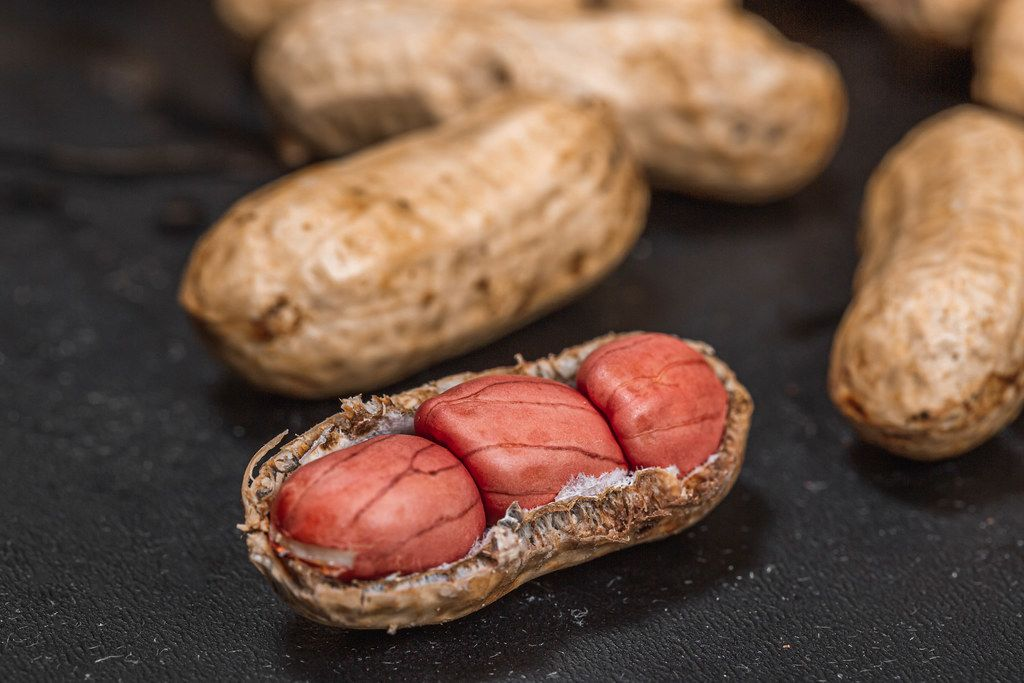 Fresh peanuts in shell on black background close up