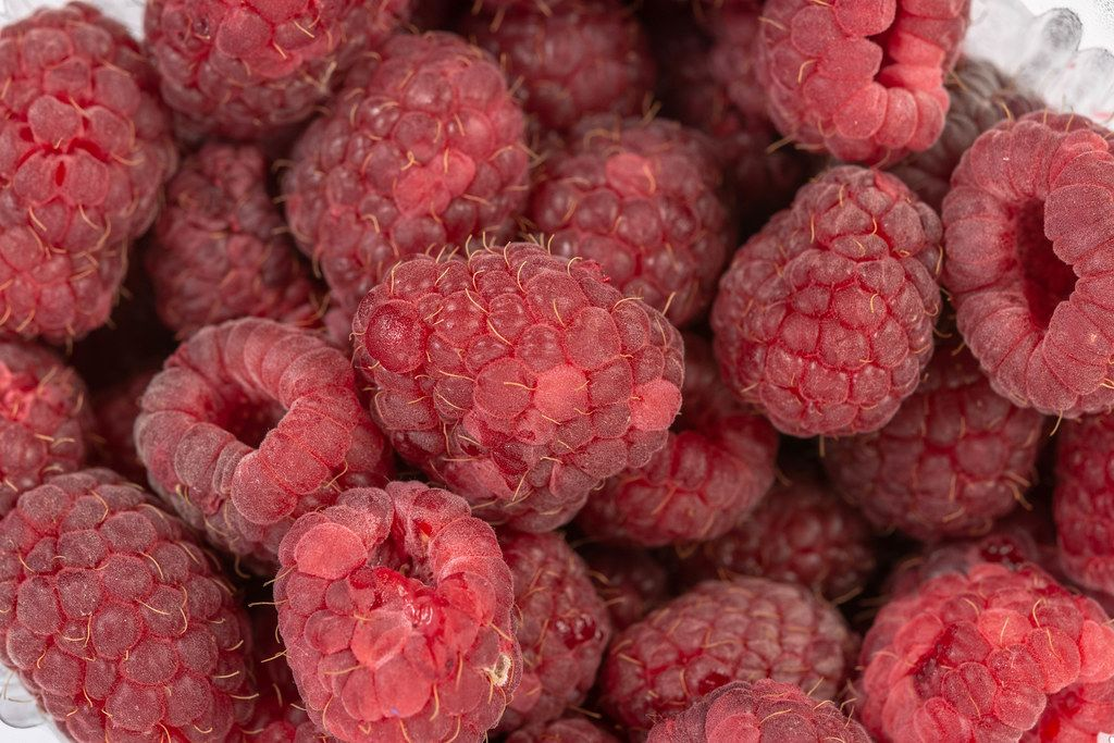 Fresh Raw Raspberries closeup macro image