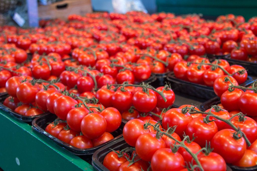 Fresh Red Tomatoes at The Market  (Flip 2019)