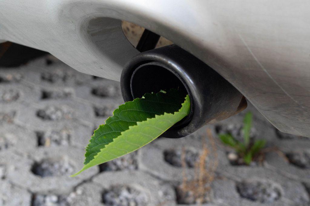 Fuel efficient car muffler with a green leaf