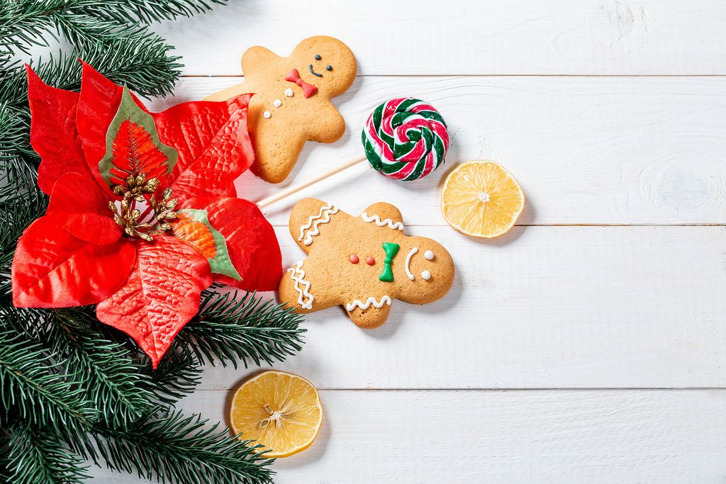 Funny gingerbread men with tree branches and a red Christmas flower on white boards