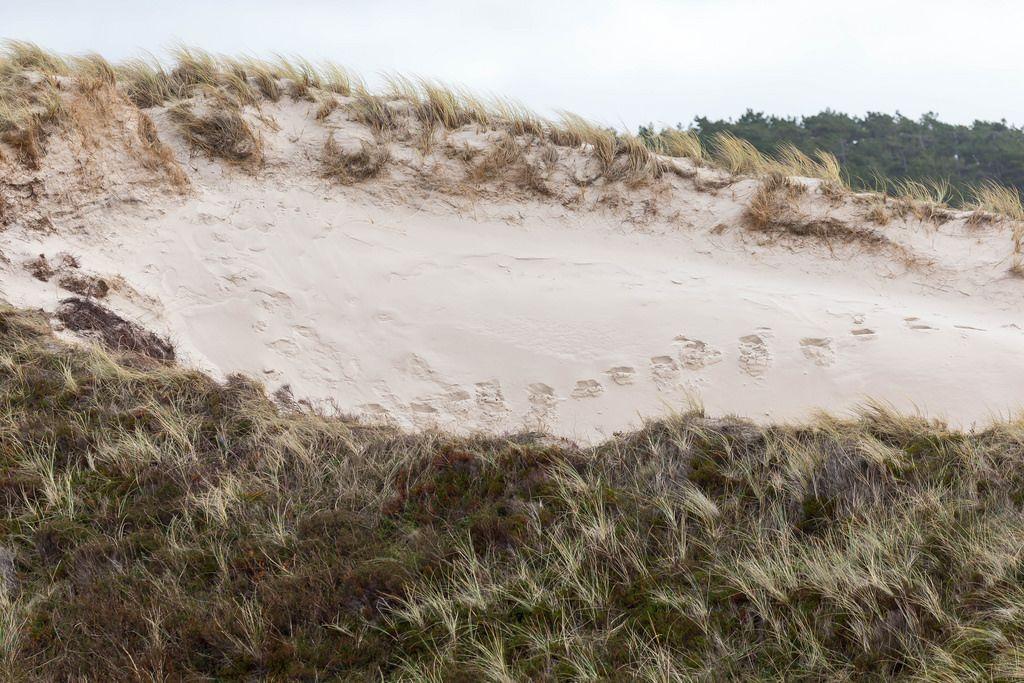 Fußabdrücke im Sand an einer Sanddüne