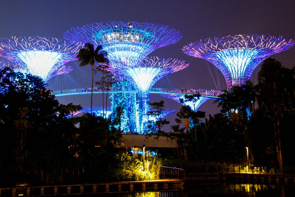 garden by the bay Singapor