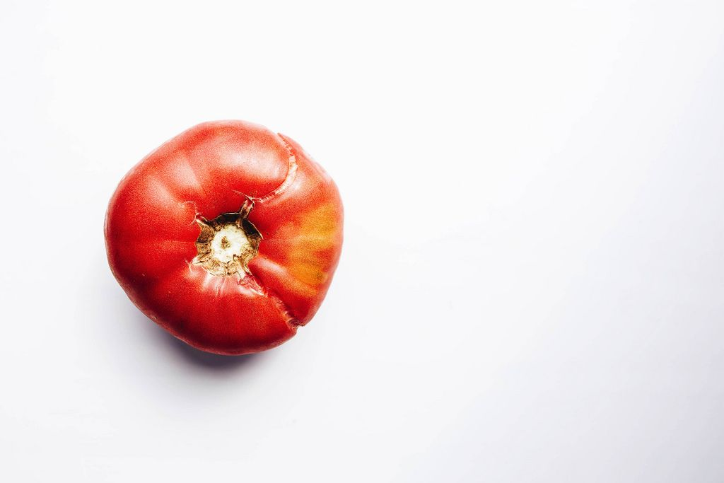 Garden red tomato on white background.Top view - organic food.