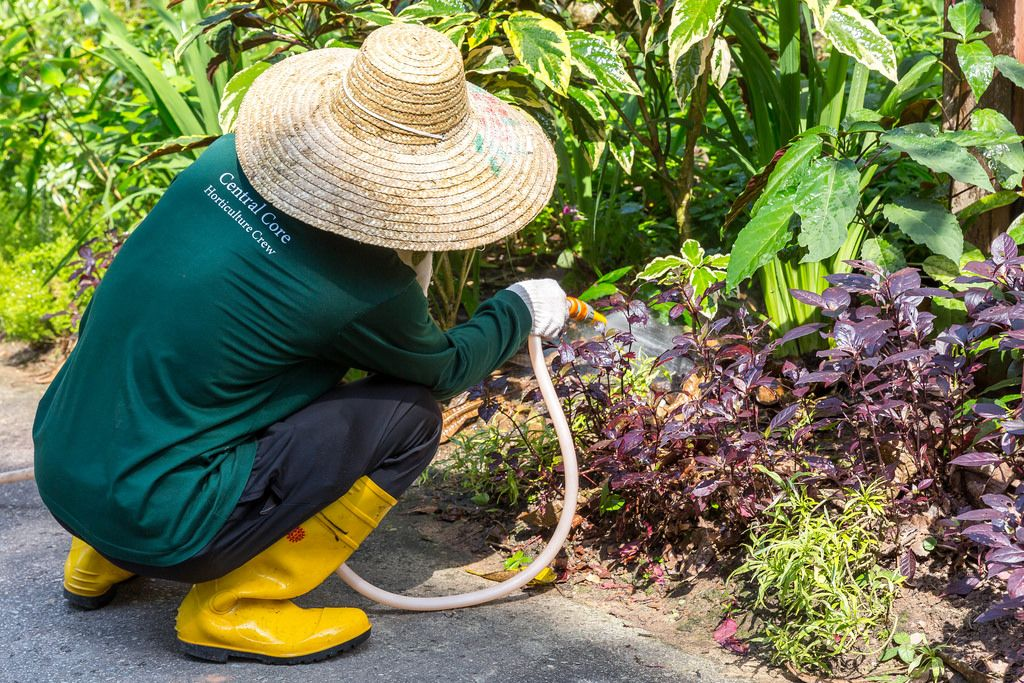 Gärtner im botanischen Garten Singapurs