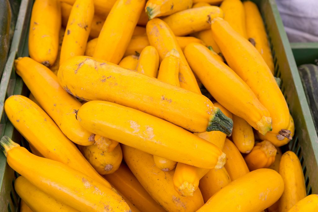 Gelbe Zucchini am Naschmarkt in Wien