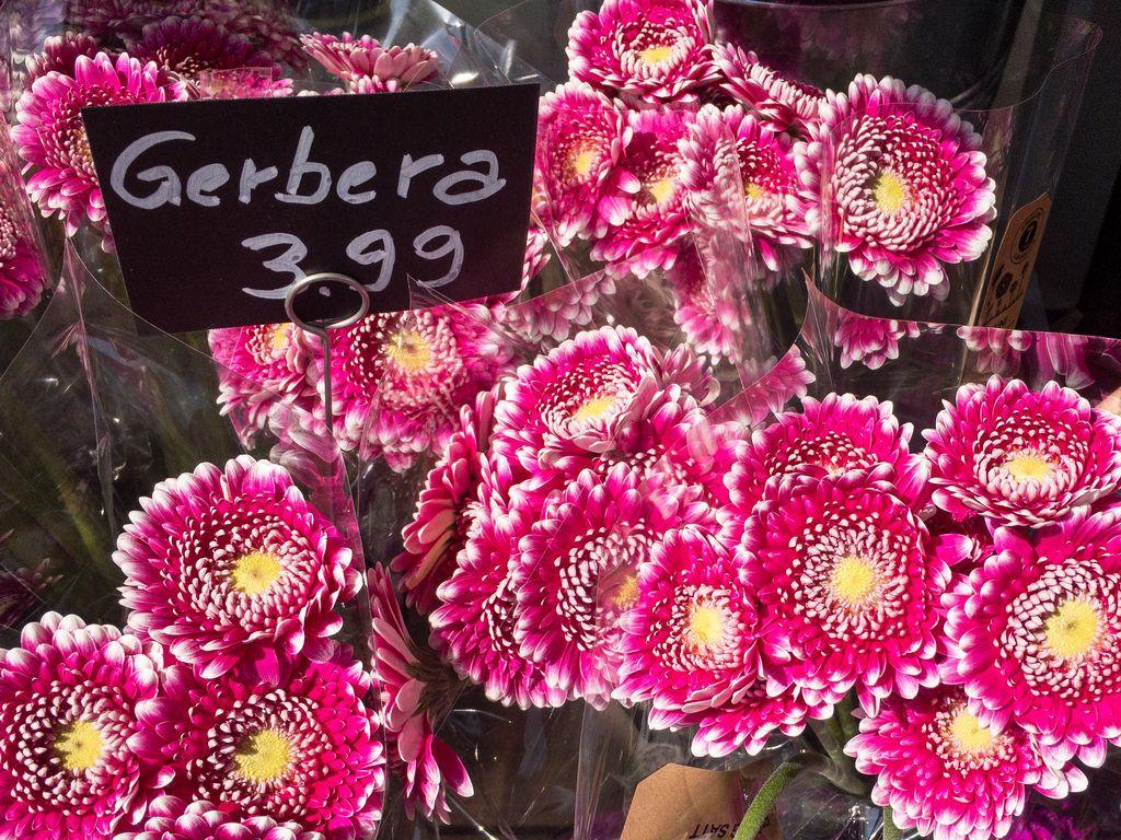 Gerbera Blumenstrauß
