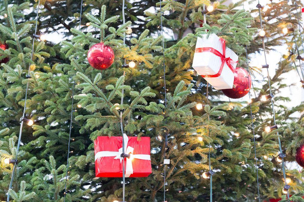 Geschmückter Weihnachtsbaum am Weihnachtsmarkt am Kölner Dom