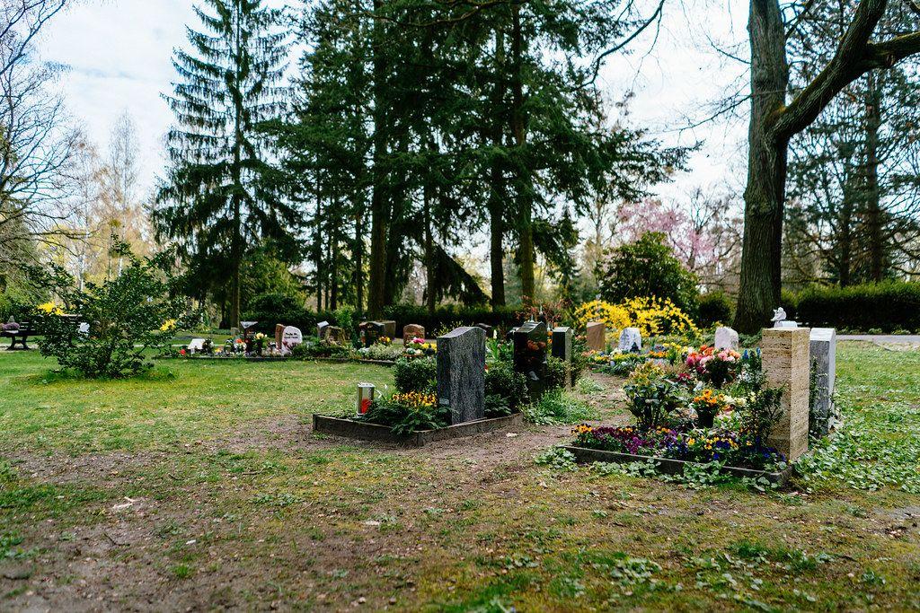 Grabumfassungen und blühende, farbenfrohe Grabbepflanzung auf dem Friedhof in Potsdam