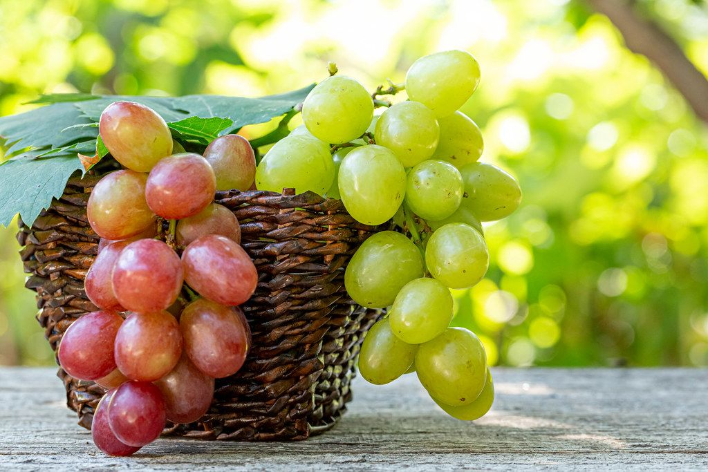Grapes in a wicker basket on an old wooden table on a blurred background of nature