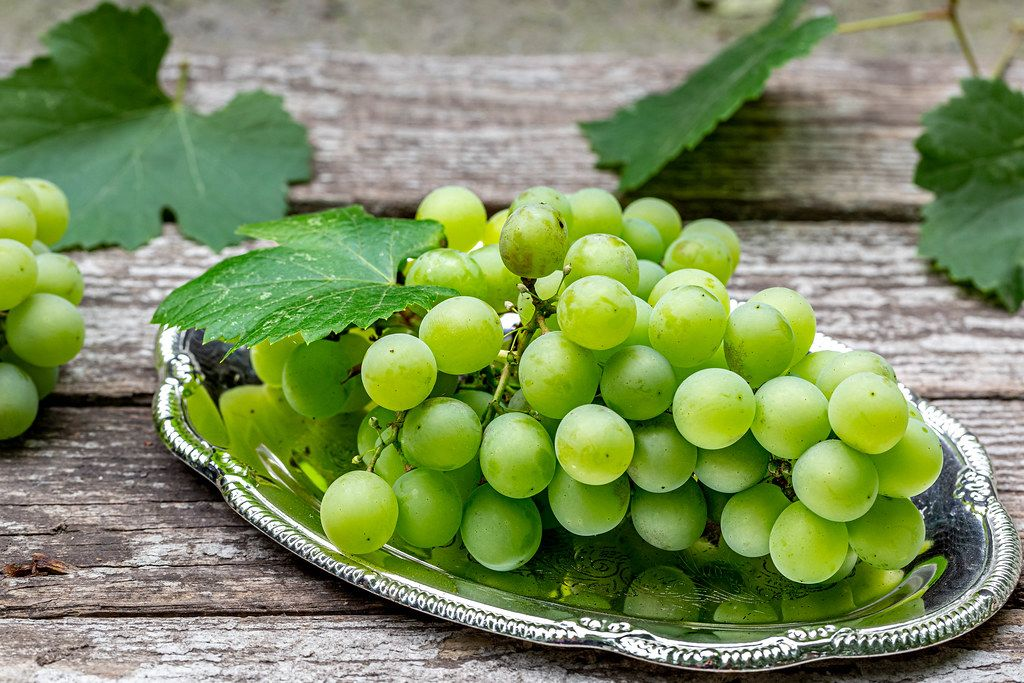 Green bunch of grape on gray wooden background