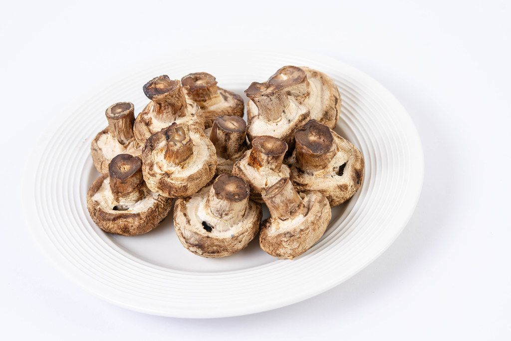 Grilled Mushrooms served on the plate isolated above white background (Flip 2019)