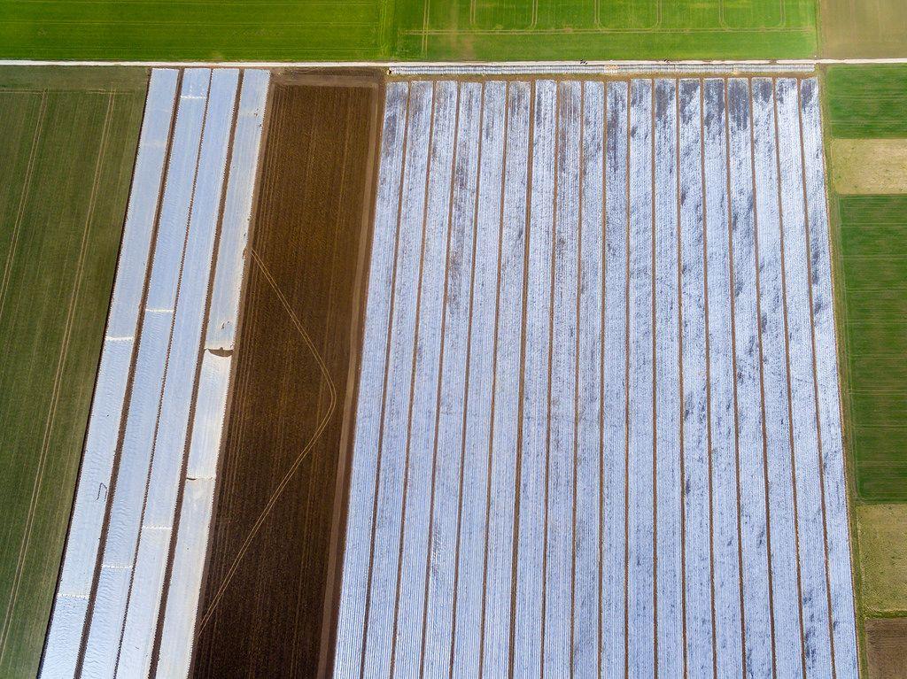 Grüne Felder und Felder unter Folie. Abstrakte Drohnenaufnahme