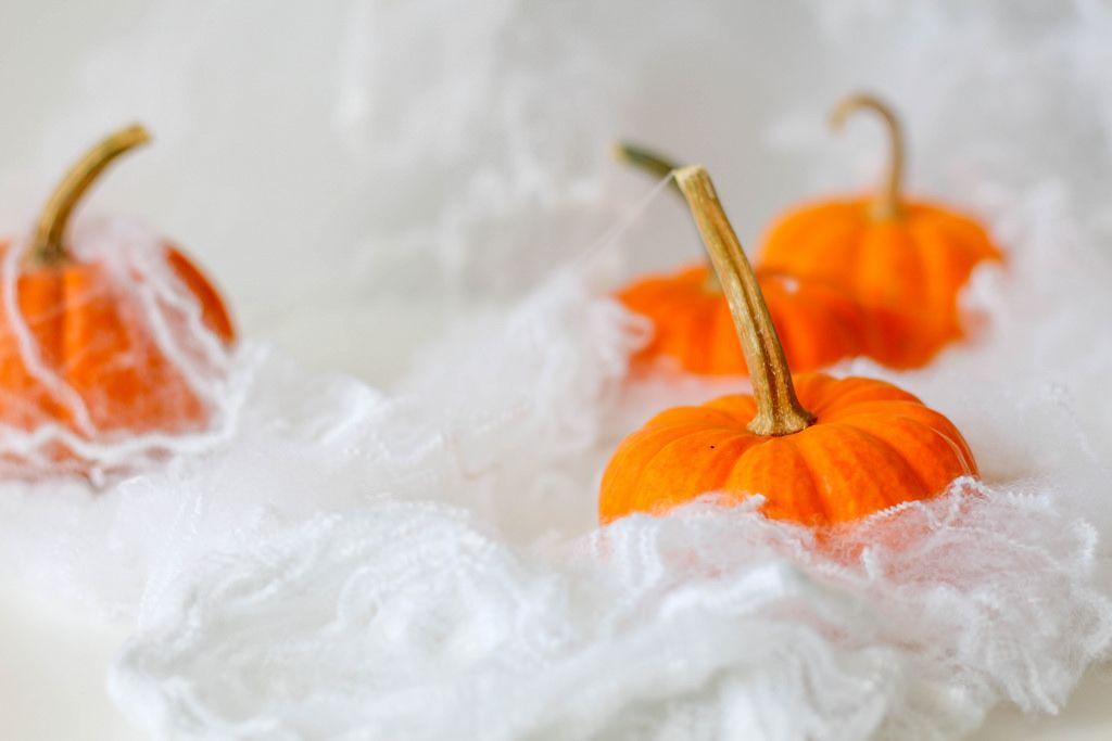 Halloween: Kürbisse eingehüllt in Spinnenweben