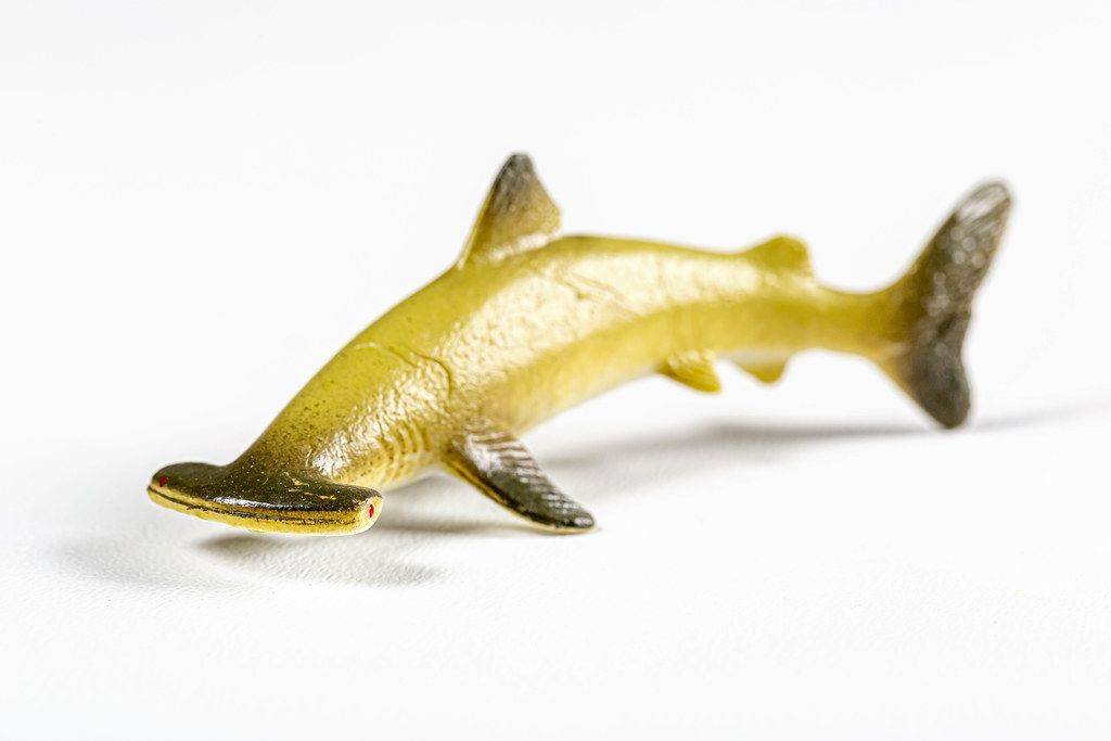 Hammerhead shark toy on white background