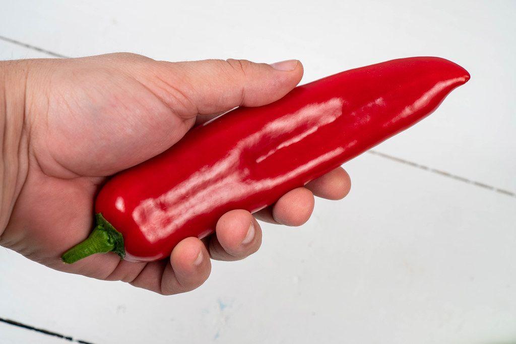 Hand hält eine rote Paprika vor weißem Hintergrund