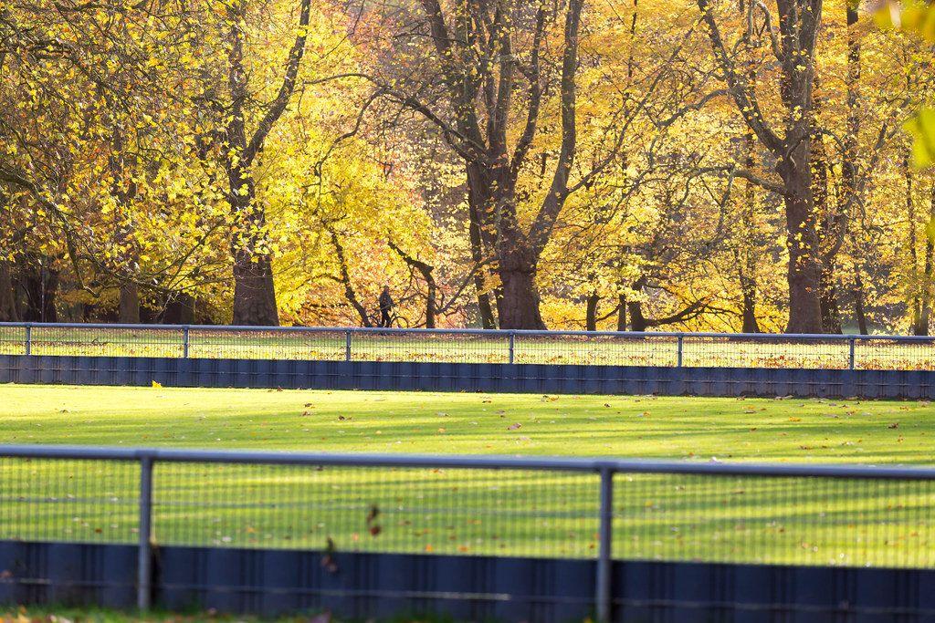 Herbst am Decksteiner Weiher