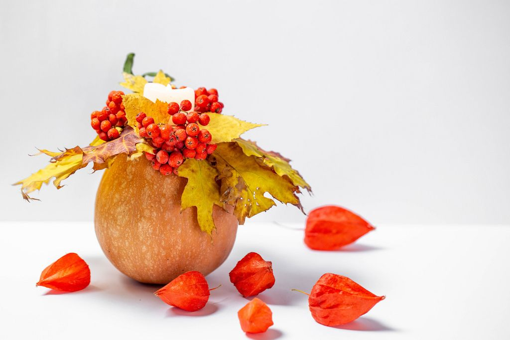 Herbst - ein Kürbis mit einer leuchtenden Kerze, gelben Blättern, roten Beeren und Physalis auf weißem Hintergrund