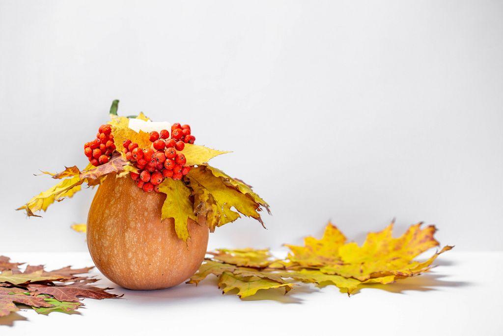 Herbstliches Arrangement - Ein Kürbis mit Kerze, roten Beeren und gelben Blättern auf weißem Hintergrund