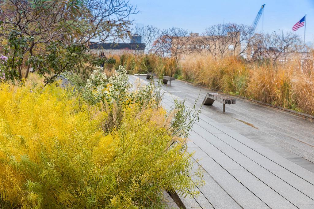 High Line, New York City