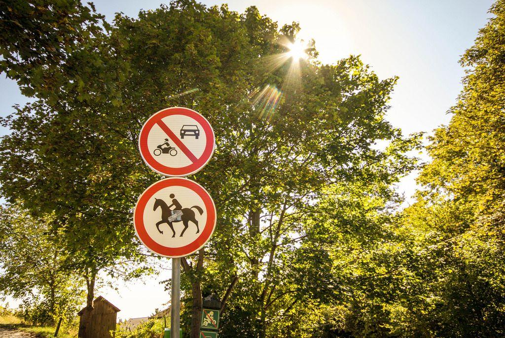 Hinweisschilder in einem Park vor großem Baum