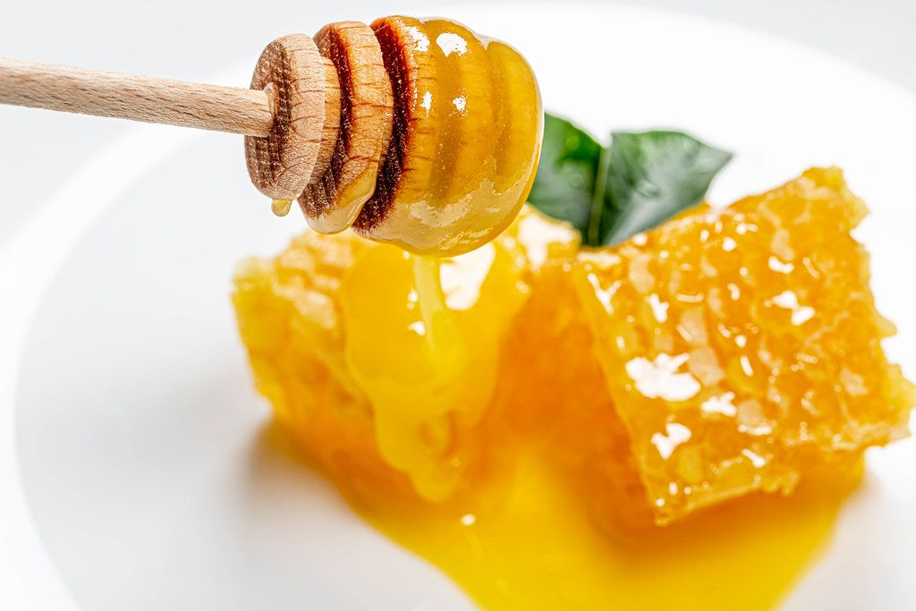 Honey dipper on the bee honeycomb background